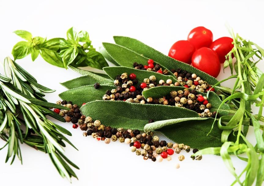 Les plantes et herbes aromatiques dujardin
