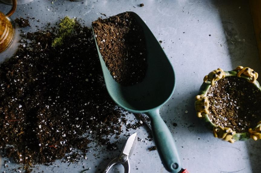 Jardinage : l'utilisation du chlorate desoude
